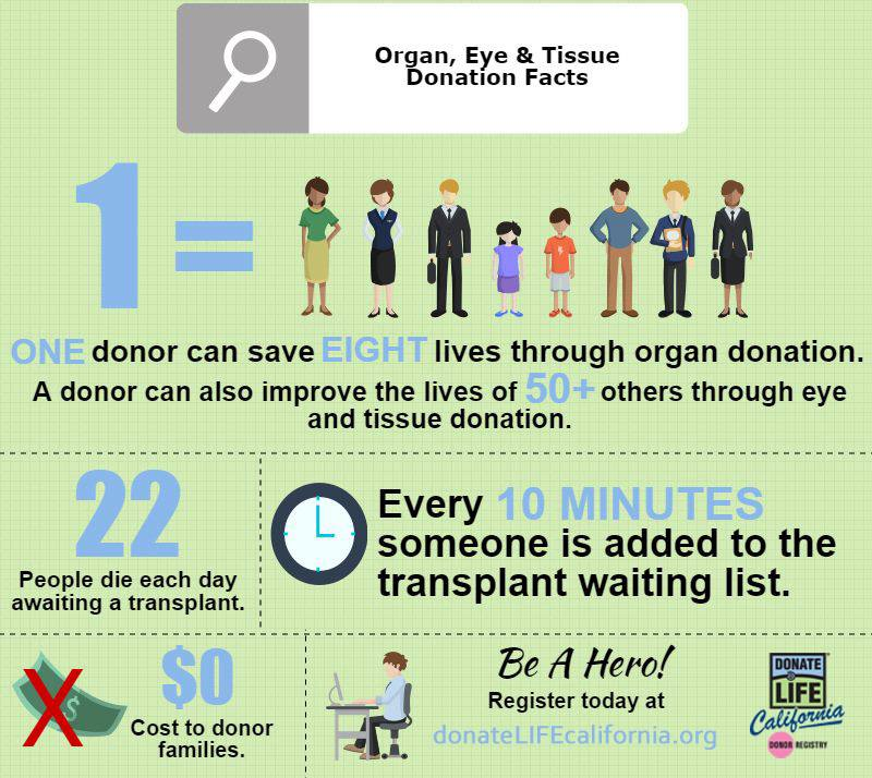 tissue donation The best and smartest organ donation tv commercial ever made box office smash.